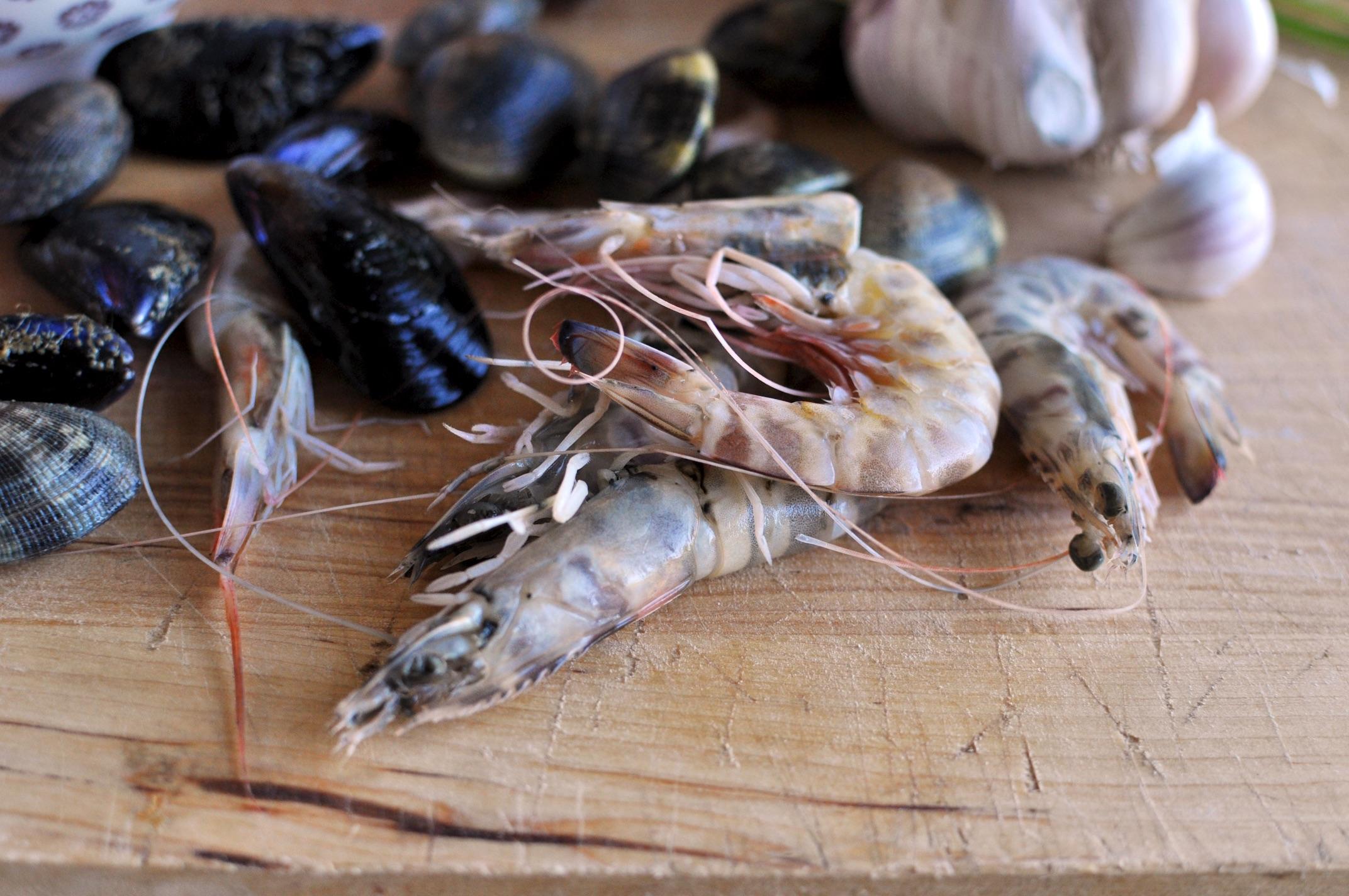 Zuppa di pesce pugliese 1 (1)
